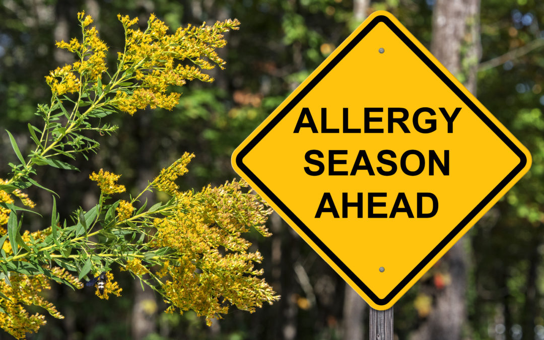 Allergies – 5 Tips to Minimize Your Symptoms at Home