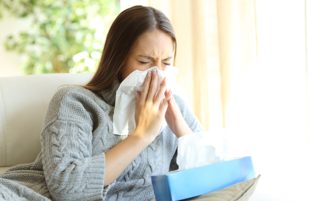 Filters that Can Improve Your Allergies this Year